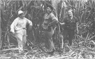 Cortando caña con su esposa y su amigo Alberto Granados.